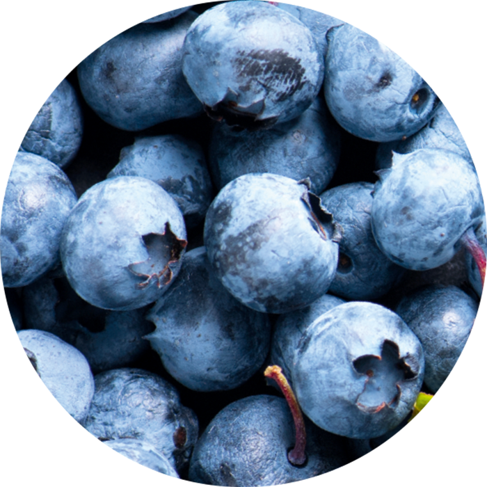 Fruit acid from blueberry wirkstoff-fruit-acid-from-blueberry.png