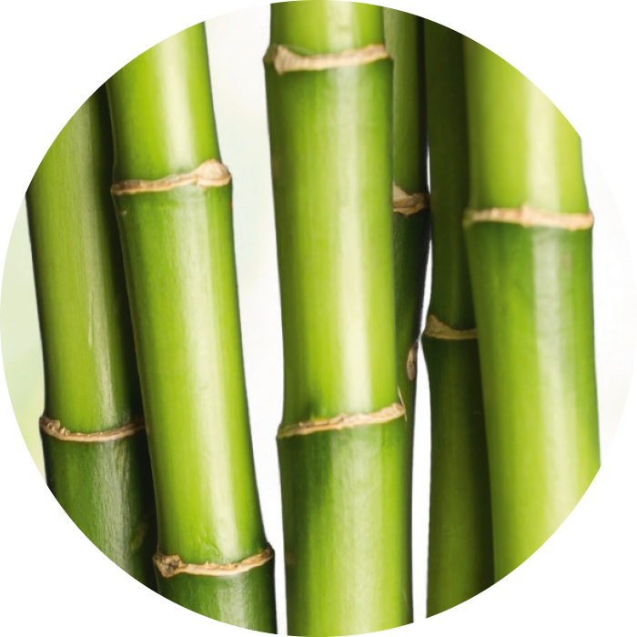Organic bamboo extract wirkstoff-organic-bamboo-extract.png