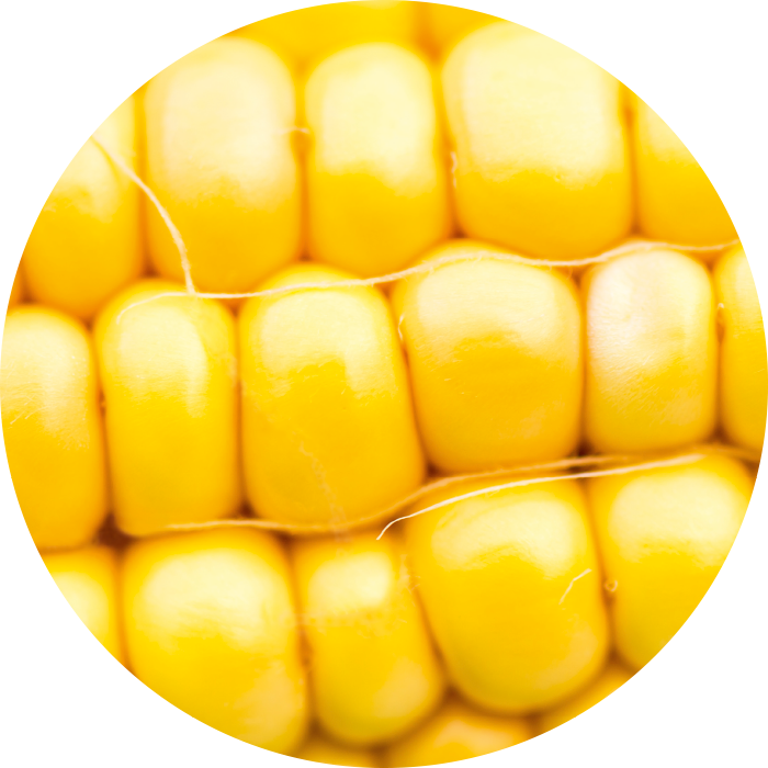 Corn oil wirkstoff-corn-oil.png